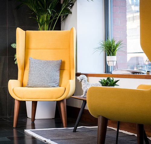 Yellow Reception Chairs - Bracken Ltd